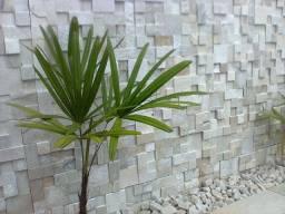 Mosaico de Pedra São Tome Branca