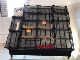 Expositor de legumes para mercado , mercearia , etc!