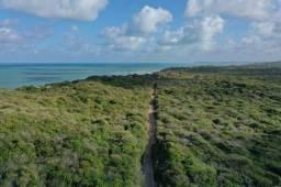 Terreno na praia de pipa vista mar 800 a4800m2