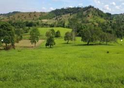 Fazenda de Pecuária em São Sebastião do Passé-BA, com 2.380 tarefas, 100% no pasto