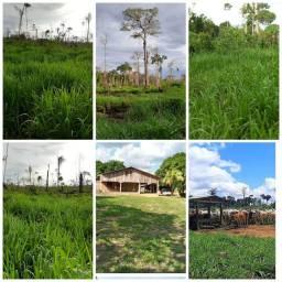Terra a venda no 180 Santo Antônio do Matupi