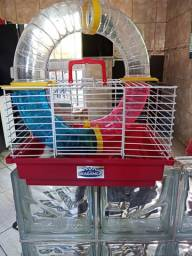 Vendo casal de hamster