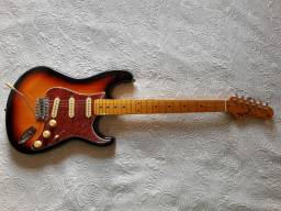 Guitarra Tagima Woodstock Series TG530 Sunburst