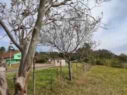 Título do anúncio: Área 3 Hectares - Margens da 020 - Santa Rosa - Taquara/RS