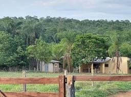 Vendo Fazenda no Povoado das 3 Vendas