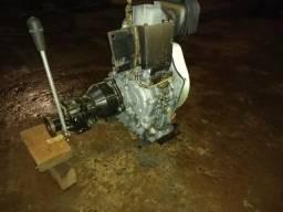 Motor 1 cilindro diesel com caixa - 2015