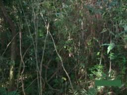 Sítio no município de Caraá - RS