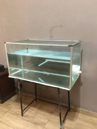 Aquário / aquaterrario