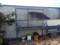 Gaiola - Viveiro - Passarinho