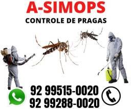 Mosquitos Dedetização Detetização