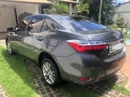 Corola GLi 2018/2019 Upper