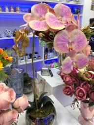 Vasos de orquídea