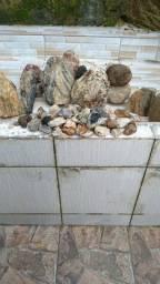 Diversas pedras para coleção. Estudo e decoração