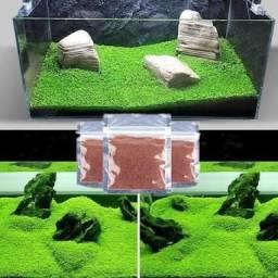 Carpete para aquário