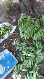 Bananas prata