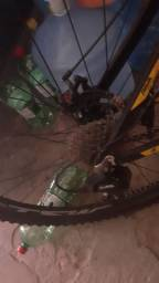 Bicicleta RAVA quadro 19
