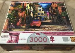 Quebra-cabeça Puzzle 3000 peças