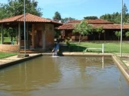 Fazenda em Bela Vista 50ha - 35min de Goiânia - Infraestrutura diferenciada