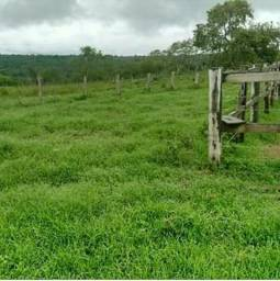 Fazenda para arrendar