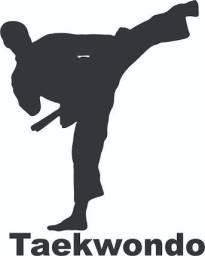 Faca aula de defesa pessoal taekwodo nao tem exame de faixa