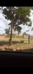 vendo chacara de tres alqueres a 7 km do centro de Caldas Novas , saida para Marzagão .