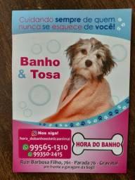 Banho e Tosa HORA DO BANHO ESTÉTICA ANIMAL