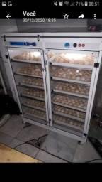 chocadeira 1000 ovos
