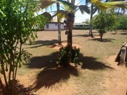 Terreno próximo Atacadãodo piso estrada do coco