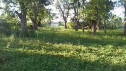 Sítio fazenda