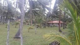 Terreno ideal para a construção de resort, de frente para a praia em ilhéus