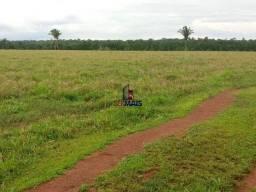 Fazenda, 335 alqueires paulista, à venda por R$ 7.370.000 Zona Rural - Nova Mamoré/RO