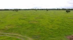 Oportunidade! Fazenda São Miguel, toda infraestruturada para pecuária. Confira!
