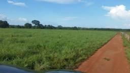 .  Fazenda 234 Alqueires em Marianópolis Tocantins