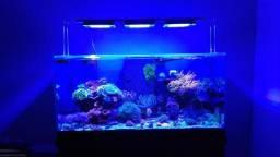 Luminária NOVA para aquario marinho 150cm