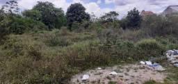 Um terreno