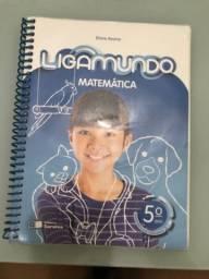 Livro 5 Ano Matemática (Colégio Encontro)