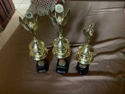 Vendo troféus