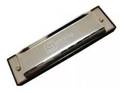 Gaita Diatônica Sg20c Com Estojo Spring