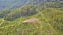 Terreno para Sítio 3 hectares em Aurora com Escritura