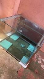 Aquario Cubo 250 litros