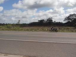 Aluga_Se terreno Chapadinha Maranhão