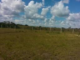 Vendo terreno Campina Grande Macapá Jari km 23