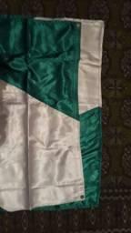 Bandeira chamego estado do parana mastro