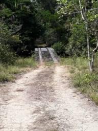300 hectares na beira do Igarapé
