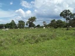 Fazenda com 1.891 hectares / 400 alqueires