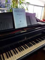 Aulas particulares de música - VIOLINO, VIOLONCELO E PIANO