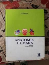 Anatomia humana e técnicas em radiologia