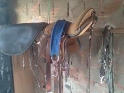 Acessórios para cavalos