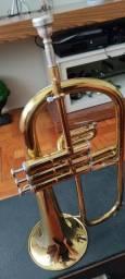 Trompete (Flugelhorn Weril Master)