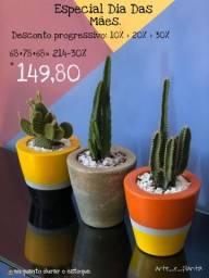 Trio vasos de cimento com plantas naturais.
